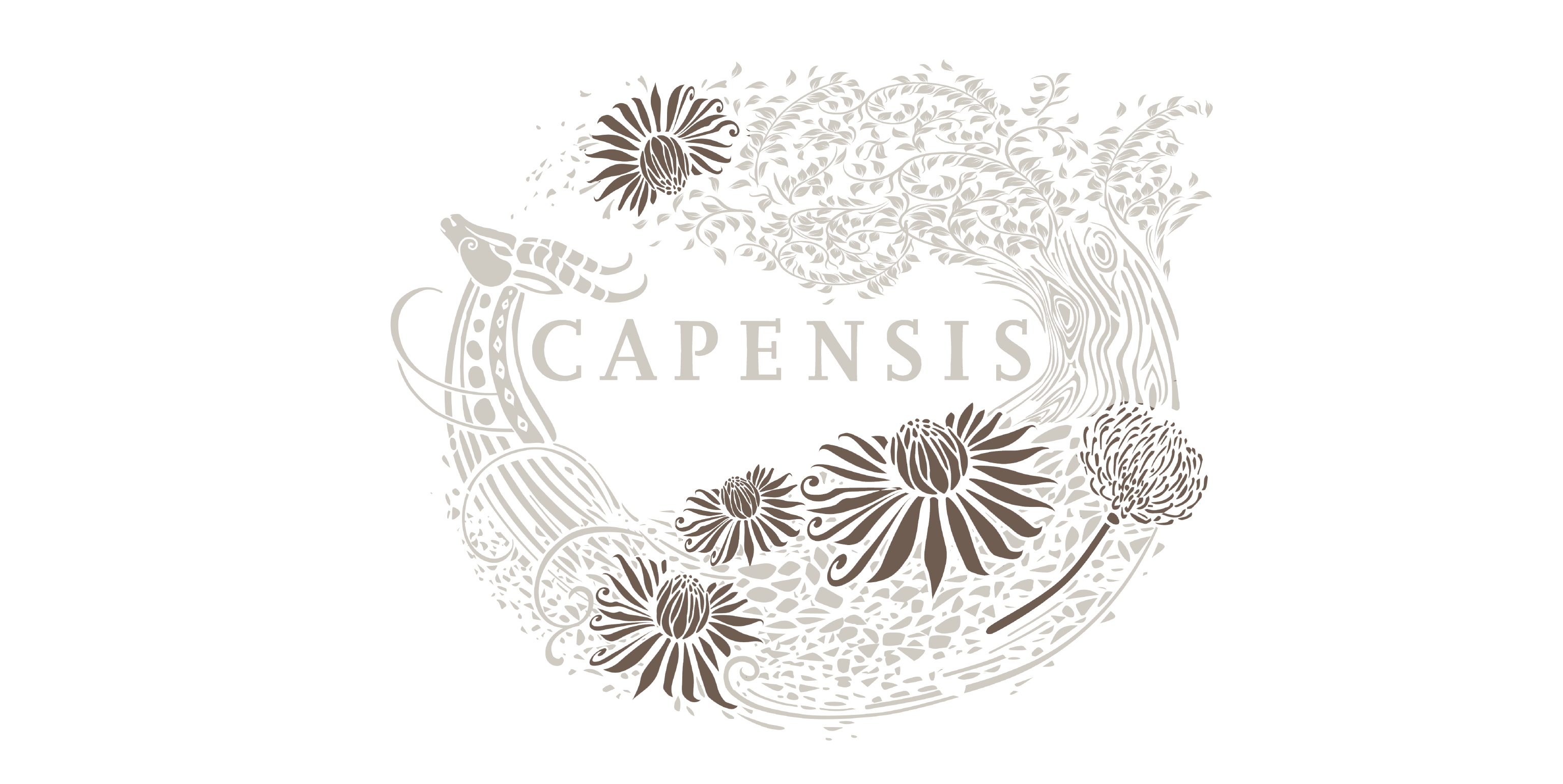 Capensis label with King Protea highlighted
