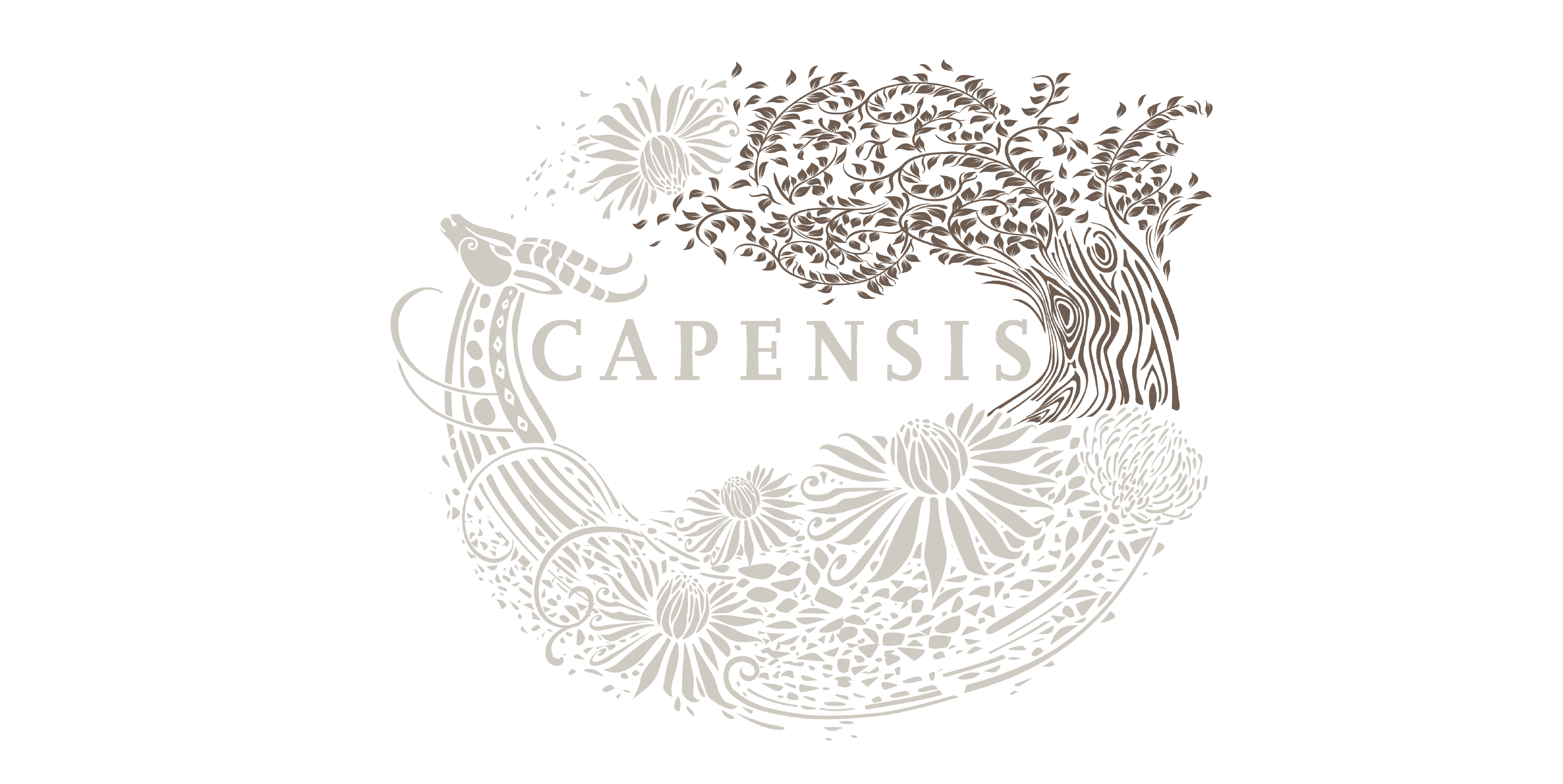 Capensis label with Marula Tree highlighted